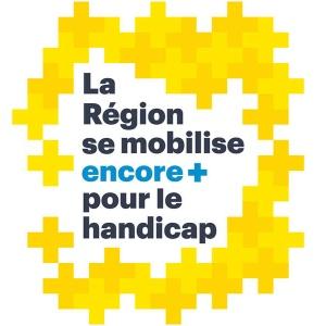 Rencontres H+ de la Région Auvergne-Rhône-Alpes
